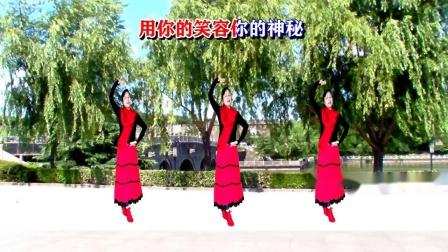 荆州雨荷新疆舞《大漠情歌》编舞:雨夜 三人版