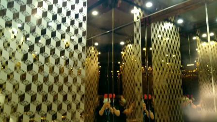 辛格林别墅电梯,乘客电梯,家用电梯到底质量和设计怎么样