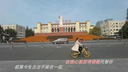 菊黄秋实(人民公园)