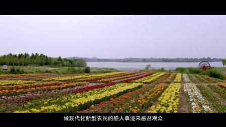 《燃烧的玫瑰湖 激情在燃烧》纪录片