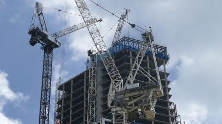 Meccano Terex CTL 650F-45 Tower Crane (Introduction) by Cranes Etc TV