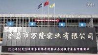 省长刘伟平视察正在建设中的金昌万隆实业公司