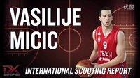 Vasilije Micic 2013 International Scouting Report