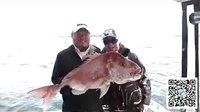 海钓 新西兰 大鱼俱乐部携手四海钓鱼 海钓特辑 【5】