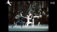 黑天鹅主题(芭蕾《天鹅湖》选萃)