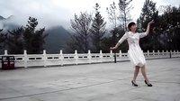 广场舞草原风光美 陕西汉中镇巴苗乡广场舞 英姐演示