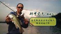 夏季鲈鱼怎么钓路亚教学片 排骨老虎 路亚很简单