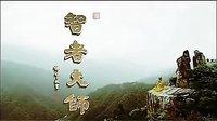 智者大师  (佛教电影)(纪录片)