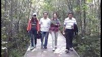 大森林之旅