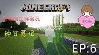 ※我的世界Minecraft※葵葵的生存日记EP6:种甘蔗记