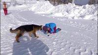 二浪河的疯女人们——雪乡 女人与狗