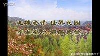 我在贵州等你 张超 贵州旅游必去景点大全推荐攻略 国家5A级风景名胜区 百里杜鹃mv