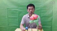 1、六瓣花魔术气球教程-浪漫气球