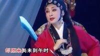 潮剧选段【生离死别情难尽】林燕云 张怡凰