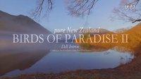 新西兰南岛7月dji航拍 Birds of paradise 2(pure New Zealand)