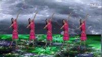 枝叶儿原创广场舞《我是一条小河》