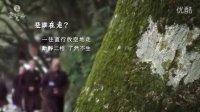 灵鹫山无生道场 - 寺院的一天