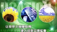 中国阳光工程·黄埔菌校精选项目(1-1):生物技术培育神奇植物-辣木_高清