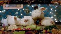 欢快的舞曲 Chicken KUK-DOO-KOO 印度电影《小萝莉的猴神大叔 》《. 回家》萨尔曼·汗 卡琳娜·卡普尔