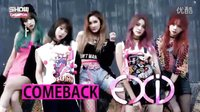 151118 EXID -《Hot Pink》 Show Champion(回归舞台)