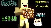 ★我的世界★Minecraft 五分钟速撸 doge球!