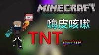 ★我的世界★Minecraft TNTgame 冰魂的个人演唱会