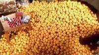 化肥、农药和激素的世界
