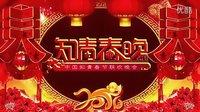 2016中国知青春晚(完整版)