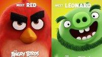 玩具展探班 愤怒的小鸟大电影 乐高玩具 lego积木 Angry Birds
