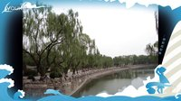 走进北京的春天 首都真美!