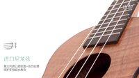 【阿青音乐坊】入门级尤克里里Ukaku品牌C150测评ukulele