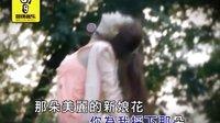 口琴【小小新娘花】蓝玫