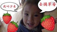 日本食玩・玩具動画小屋  摘草苺