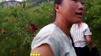 TSH视频田 织金洞大峡谷桃园风趣7