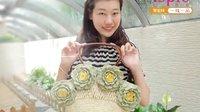 第22集 魅力牡丹包包 编织教学教程视频 棉草拉菲随身小田园系列