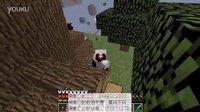 Minecraft职业空岛生存EP2|The PEI.survive|杀怪杀怪!|黑影D