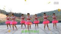 广场舞教学完整版《万树繁花》2016最新 广场舞