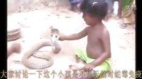 小孩与毒蛇在一起的时候