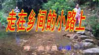 台湾校园歌曲【走在乡间的小路上】八十年代流行歌曲
