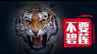 再凶猛的老虎都咬不穿脸皮厚的人