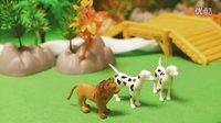 狮子和猎狗的故事 亲子教育讲故事 小故事大道理-2【乐成宝贝】