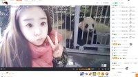 小灰灰 《神农架》之旅(中)看大熊猫 蜂巢 神农坛(屏录弹幕版)20161104