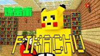 Minecraft我的世界,怪物学院—炼金术,僵尸变身皮卡丘电晕铁傀儡