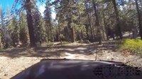 越野探险,穿越美国红杉国家深林公园(二)
