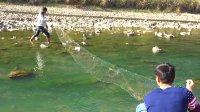 欢子野外生存,无意间发现渔网