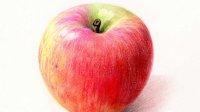 【又画】苹果-4(彩铅画教程)