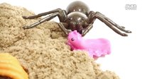 海底小纵队 巴克队长呱唧猫皮医生谢灵通达西突突兔小萝卜章教授 蜘蛛的攻击,一个新的有趣的故事