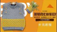 【九色鹿编织教程】菠萝毛衣--花样补充视频  乖诺诺  零基础女士毛衣 新手全程毛衣视频