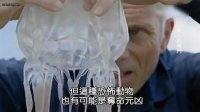 《河中巨怪》第八季第2集中文版:海上失踪案(Death Down Under)
