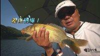 钓鱼视频《钩尖江湖》第四十八期 道中道 小崔雨中寻大鱼